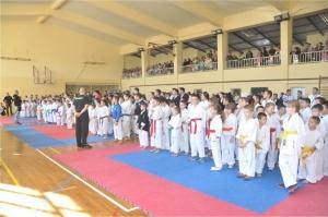 Nemzetközi karate verseny