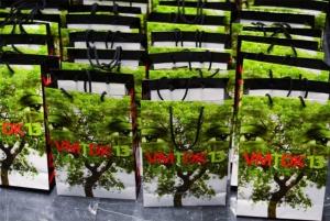 A tudás fája — a fa tudása