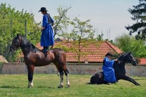 Gyarmat István és Kubik Patrik lovasbemutatóján