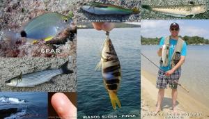 Tengeri horgászat vajdasági szemmel (2. rész)
