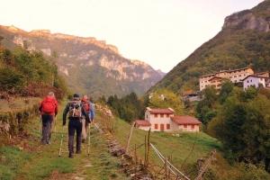 A túrák nagymestere: nordic walking