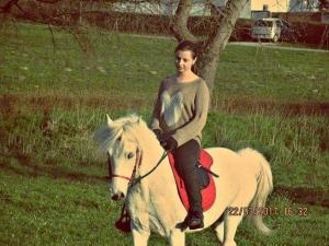 A lovassport testet, lelket gyógyít