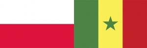 Lengyelország–Szenegál 1:2 (0:1)