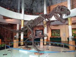 Dinoszauruszok korszaka