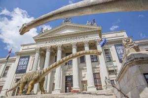 Dinoszaurusz-kiállítás nyílik a szegedi Móra-múzeumban