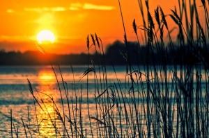 Szabadkai gyalogtúra a naplementében