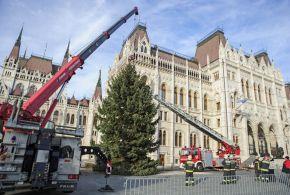 Felállították Magyarország karácsonyfáját